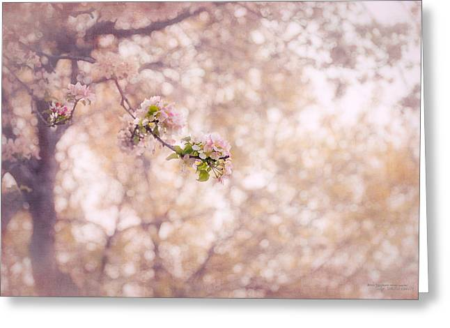 Kim Klassen Texture Greeting Cards - Visions of Spring Greeting Card by Dustin Abbott