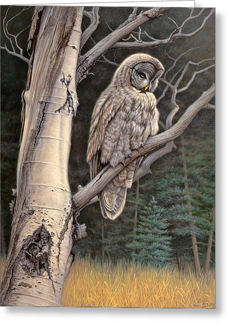 Edge Greeting Cards - Visitor from the north-Great Grey Owl Greeting Card by Paul Krapf