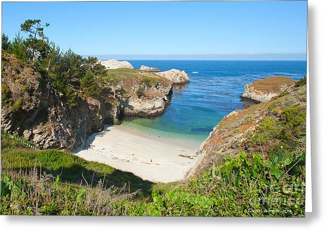 Vista of China Cove at Point Lobos State Reserve California Greeting Card by Artist and Photographer Laura Wrede