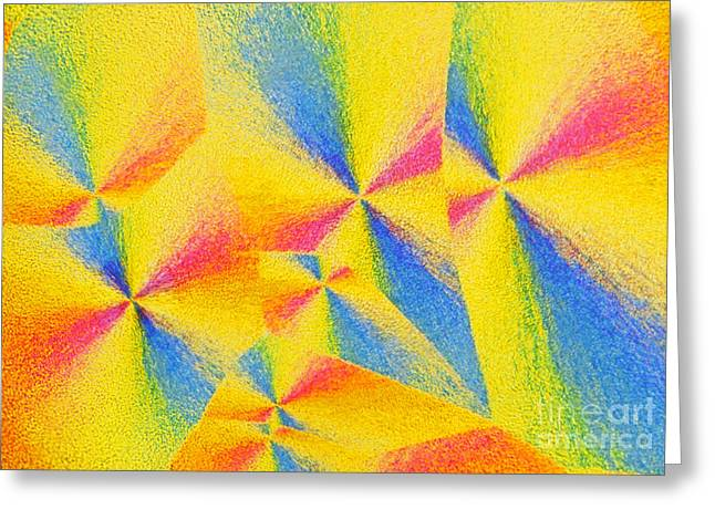 Polarizing Greeting Cards - Vitamin C Greeting Card by James M Bell