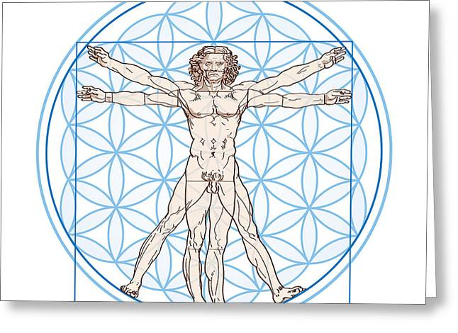 Proportions Of Man Greeting Cards - Vitruvian Man In Flower of Life Greeting Card by Peter Hermes Furian