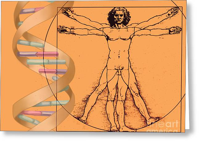 Vitruvian Man Greeting Cards - Vitruvian Man With Dna Greeting Card by Spencer Sutton