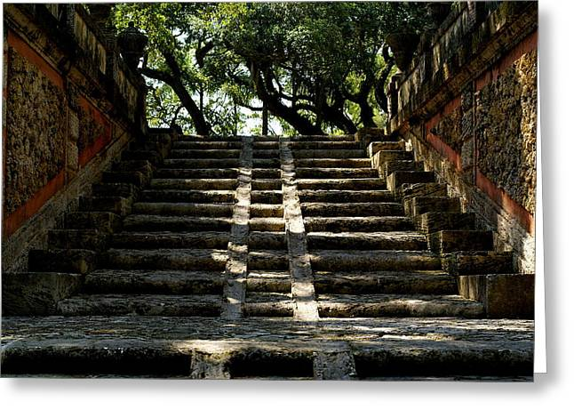 Lime Pyrography Greeting Cards - Vizcaya Steps Greeting Card by Brooks Byrd