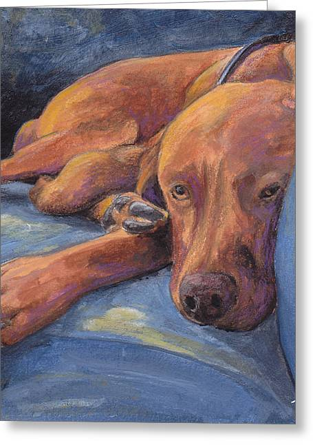 Vizsla Napping Greeting Card by Terry Albert