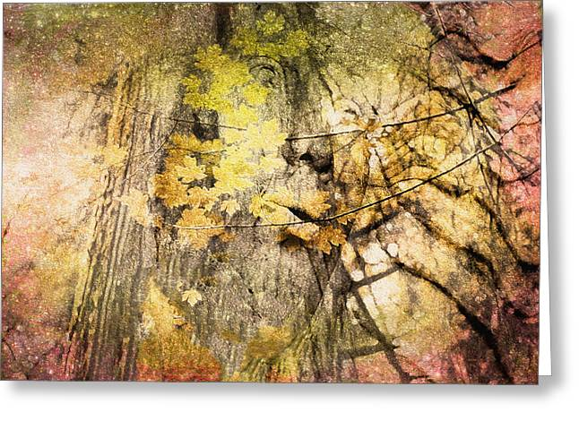 Gaia Greeting Cards - Her Forest Greeting Card by Kathy Bassett