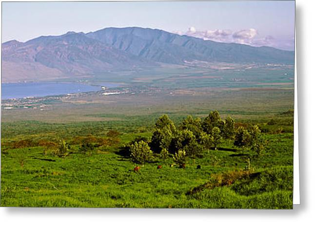 Pacific Islands Greeting Cards - Volcanic Crater, Koko Crater, Honolulu Greeting Card by Panoramic Images