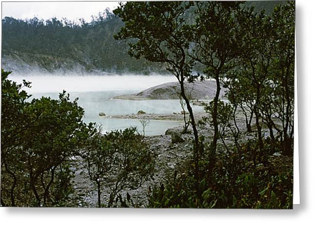 Meteor Greeting Cards - Volcanic Lake In A Forest, Kawah Putih Greeting Card by Panoramic Images