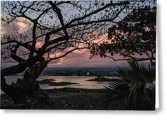 Tree Leaf On Water Greeting Cards - VOLCANIC SUNSET on HILO BAY - BIG ISLAND Greeting Card by Daniel Hagerman