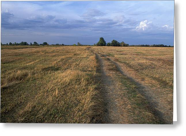 Rural Landscapes Greeting Cards - Volga s flood lands Greeting Card by Anonymous
