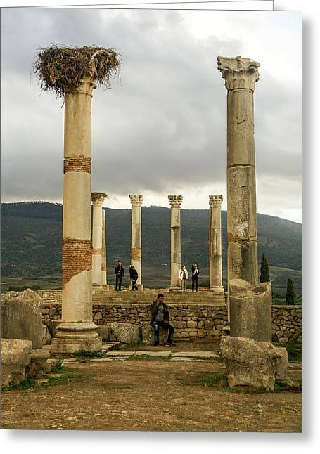 Volubilis Archeological Site Greeting Card by Photostock-israel