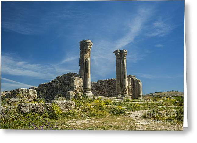 Caracalla Greeting Cards - Volubilis Greeting Card by Patricia Hofmeester