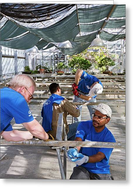 Volunteers At A Botanic Garden Greeting Card by Jim West