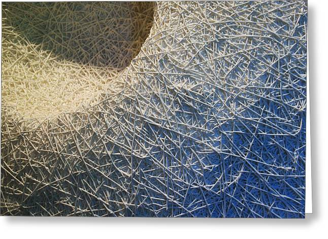 Spheres Reliefs Greeting Cards - Vortex Detail Greeting Card by Daniel P Cronin