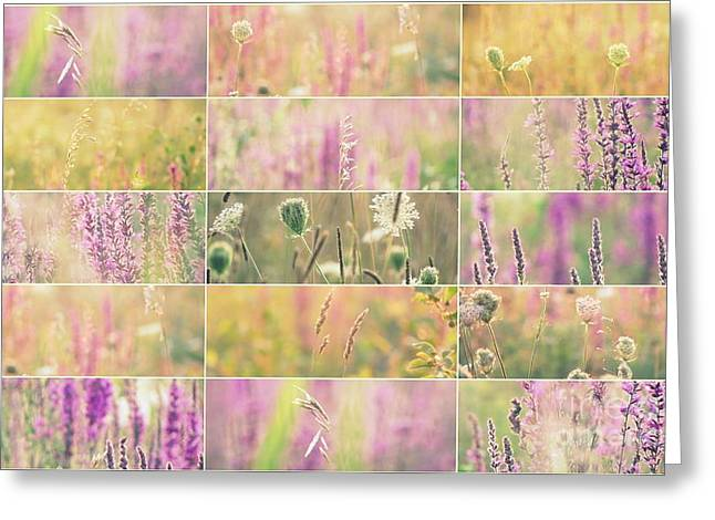 Wildfowers Greeting Cards - Vue de haut Greeting Card by France Laliberte