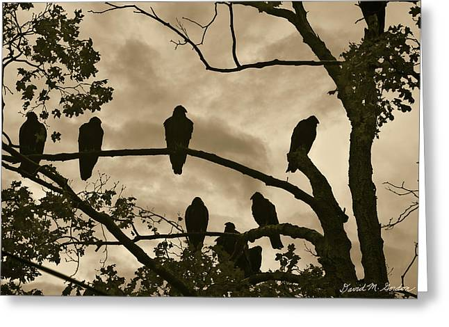 Volt Greeting Cards - Vultures And Cloudy Sky Greeting Card by David Gordon