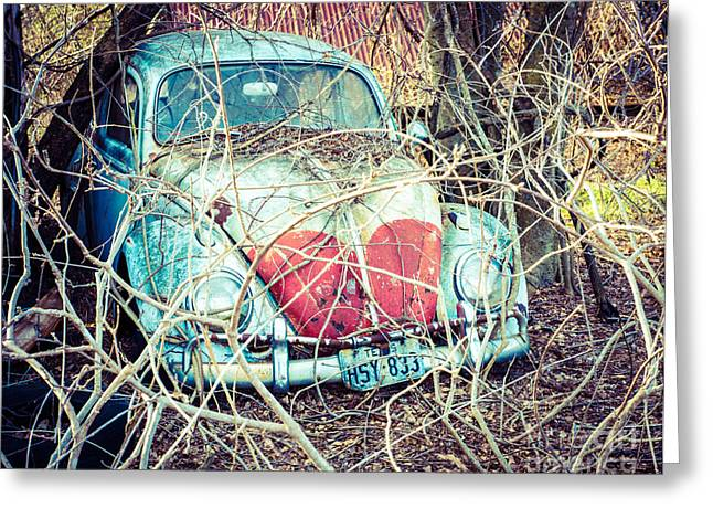 Vw Beetle Greeting Cards - VW in the Vines Greeting Card by Sonja Quintero