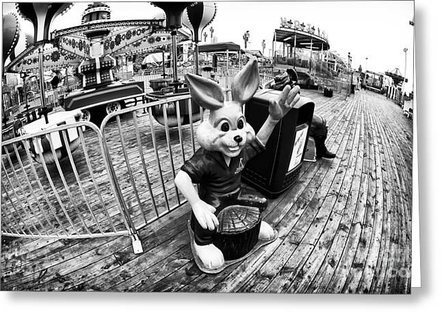 Seaside Heights Greeting Cards - Wabbit Wave Greeting Card by John Rizzuto