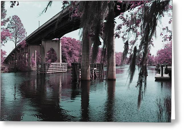 South Carolina Infrared Landscape Greeting Cards - Waccamaw River Bridge in April Infrared Greeting Card by MM Anderson