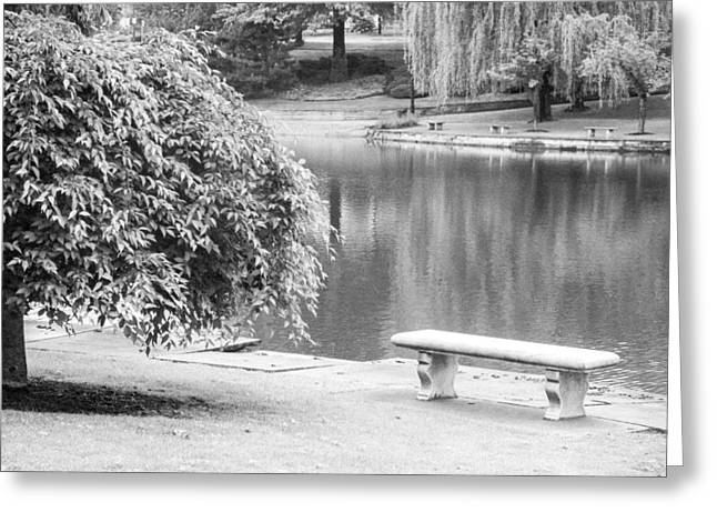 Reserve Greeting Cards - Wade Lagoon Landscape Number Two Greeting Card by David Schwartz