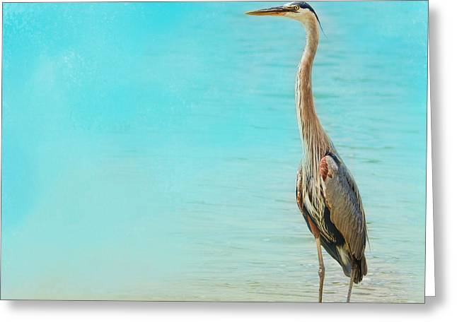 Tennessee River Greeting Cards - Wading - Blue Heron - Wildlife Greeting Card by Jai Johnson