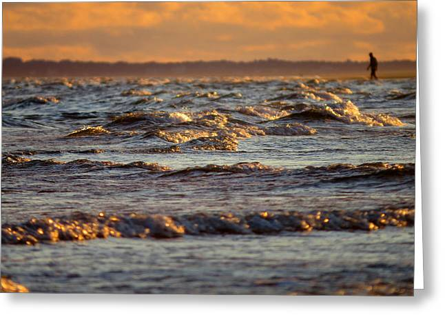 Cold Storage Beach Greeting Cards - Wading in Jewel Tipped Water Greeting Card by Dianne Cowen