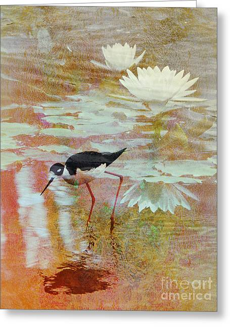 Water Lilly Digital Greeting Cards - Wading Pool Greeting Card by Robert Ball