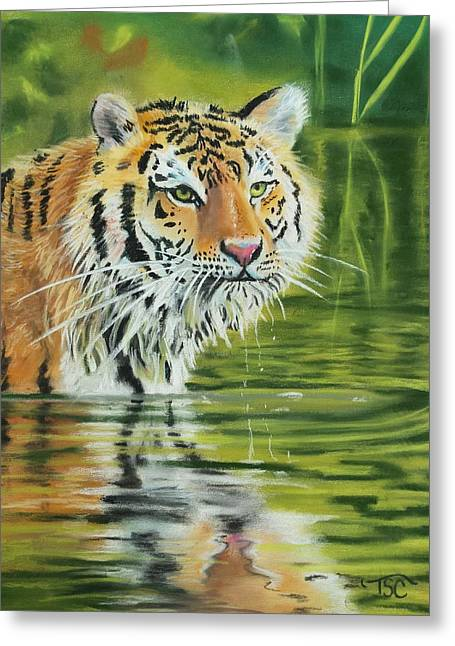 Game Pastels Greeting Cards - Wading Tiger Greeting Card by Tammy Crawford