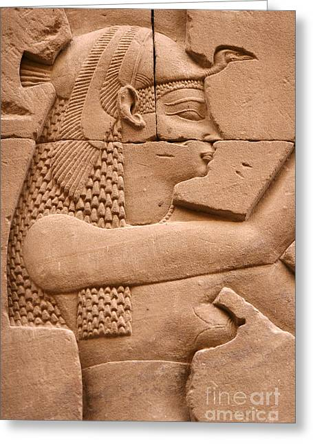 Wadjet Greeting Card by Stephen & Donna O'Meara