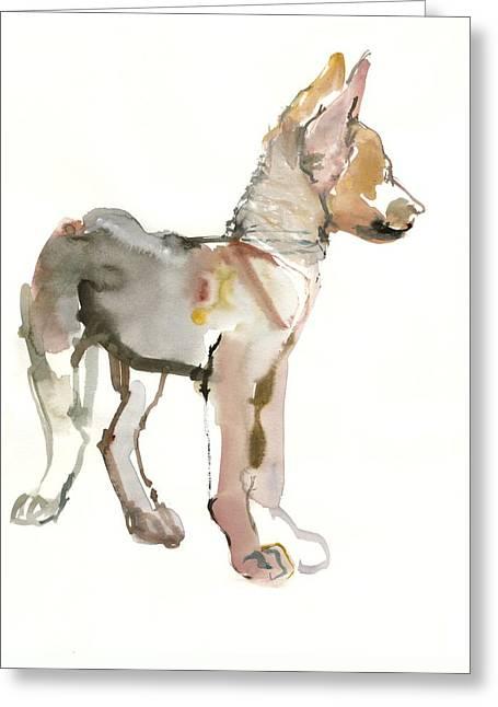Waggle Arabian Wolf Pup Greeting Card by Mark Adlington