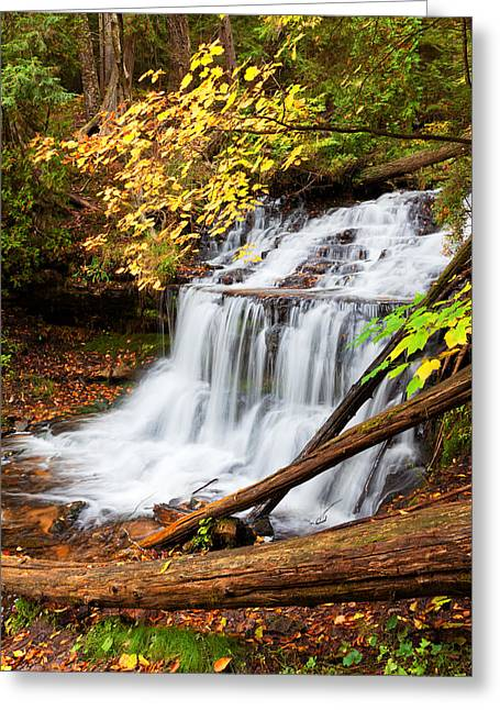 Wagner Falls In Autumn Greeting Card by Craig Sterken