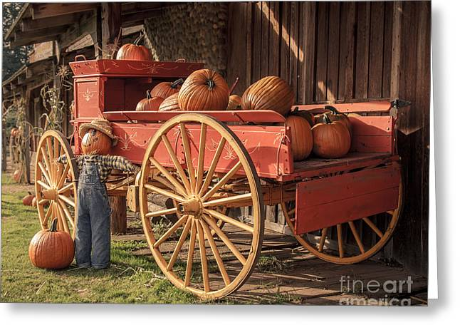Autumn Prints Greeting Cards - Wagon Full of Pumpkins Greeting Card by Lucid Mood