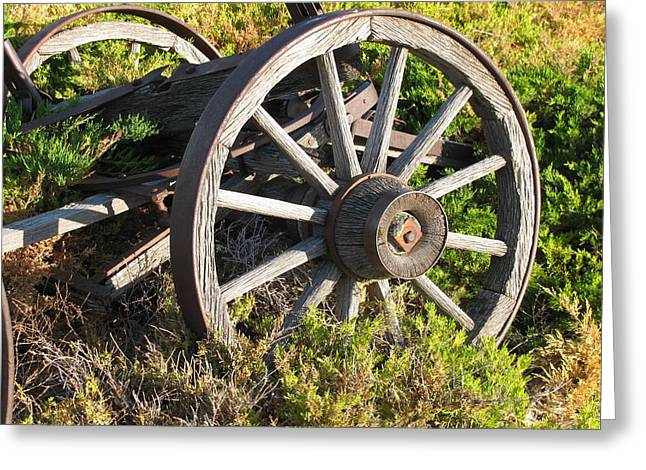 Wagon Wheels Greeting Card by Steven Parker