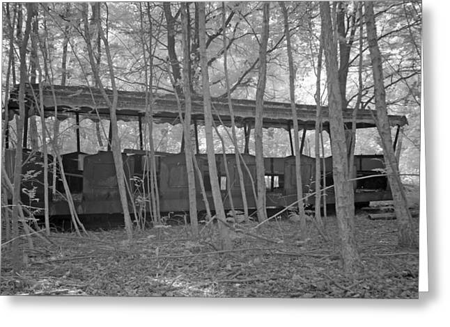 Wagons in the forest in infrared light in Netherlands Greeting Card by Ronald Jansen