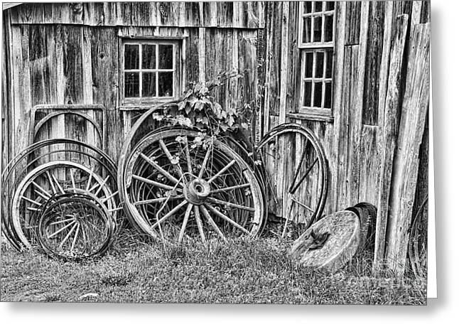 Wagons Lost Greeting Card by Crystal Nederman