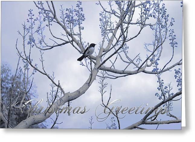Wagtail Greeting Card by Elaine Teague