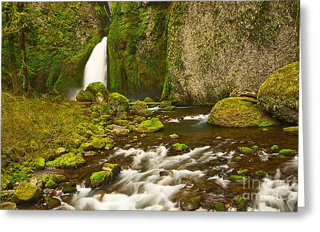 Moss Greeting Cards - Wahclella Falls in the Columbia River Gorge in Oregon. Greeting Card by Jamie Pham
