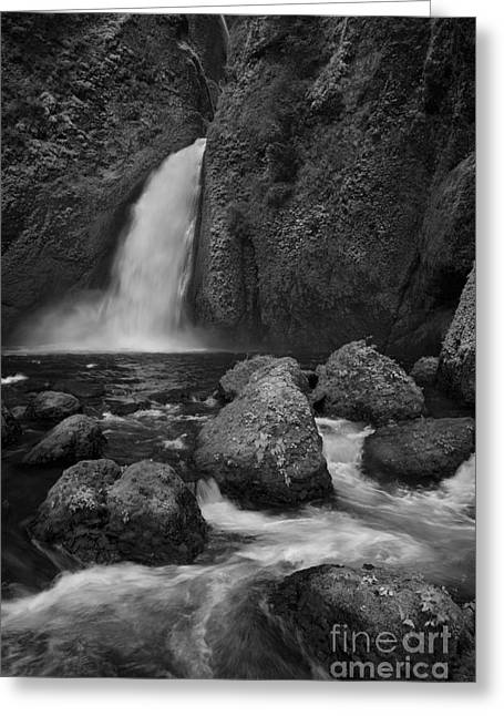 Overgrown Greeting Cards - Wahclella Falls Greeting Card by Keith Kapple