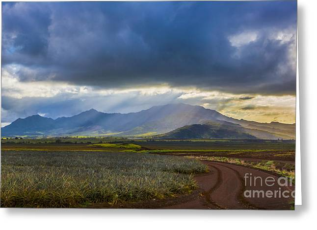 Paradise Road Greeting Cards - Waianae Mountains of Oahu Hawaii Greeting Card by Diane Diederich