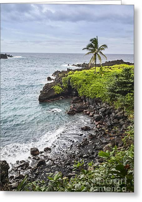 Famous State Parks Greeting Cards - Waianapanapa Coast - Maui Greeting Card by Jamie Pham