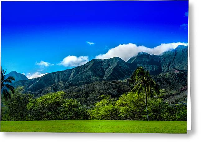 Tropical Golf Course Greeting Cards - Waiehu Golf Greeting Card by Tamara Dattilo