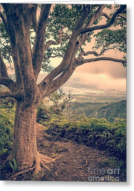 Waihee Ridge Trail Maui Hawaii Greeting Card by Edward Fielding
