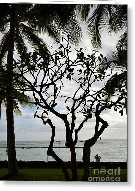 Best Ocean Photography Greeting Cards - Waikiki Beach Hawaii Greeting Card by Eva Kaufman
