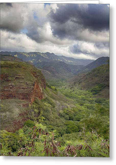 Waimea Valley Greeting Cards - Waimea Canyon Lookout Greeting Card by Douglas Barnard