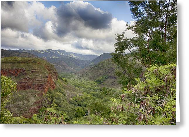 Waimea Valley Greeting Cards - Waimea Canyon Lookout V3 Greeting Card by Douglas Barnard