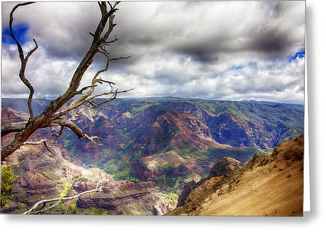 Waimea Valley Greeting Cards - Waimea Canyon V4 Greeting Card by Douglas Barnard