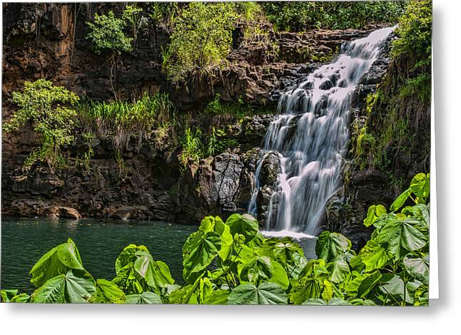 Waimea Falls Greeting Cards - Waimea Falls Greeting Card by Dan McManus
