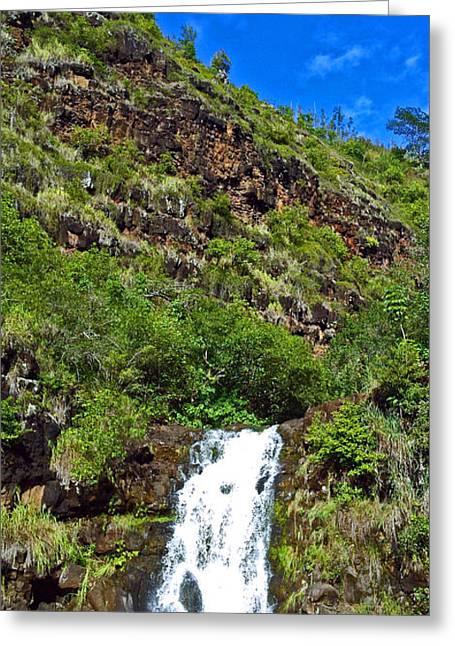 Waimea Falls Greeting Cards - Waimea Falls  Greeting Card by Lisa Cortez