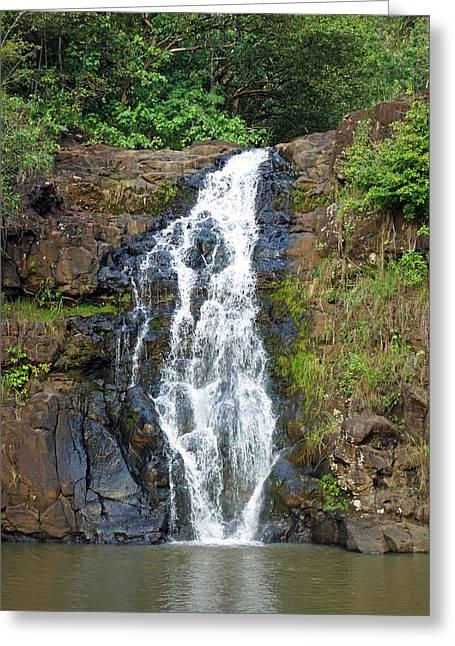 Waimea Falls Greeting Cards - Waimea Falls Study 1 Greeting Card by Robert Meyers-Lussier