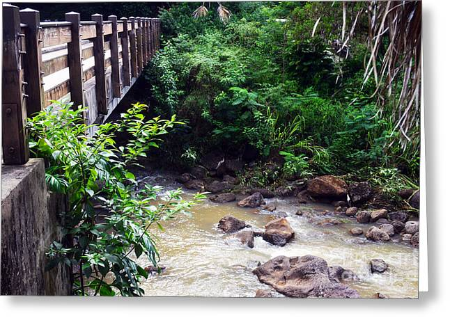 Waimea Falls Greeting Cards - Waimea Valley Bridge Greeting Card by Lisa Cortez