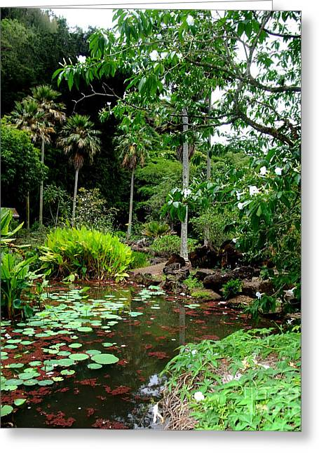 Waimea Valley In The North Shore Of Oahu Hawaii Greeting Card by Jim Fitzpatrick